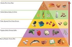 Eliminacin las dietas de proteinas para adelgazar rapido gratis precio